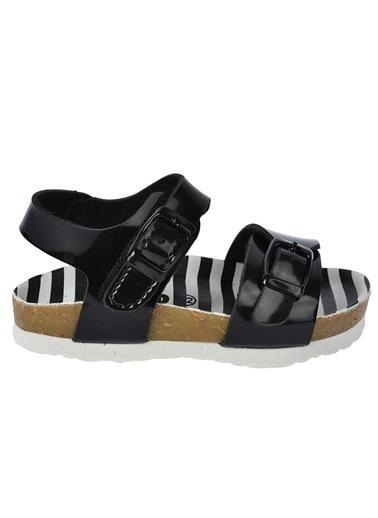 Vicco Vicco Patik Sandalet  321.P20Y.359-01 Siyah